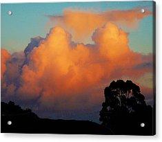 Gilded Dawn Acrylic Print
