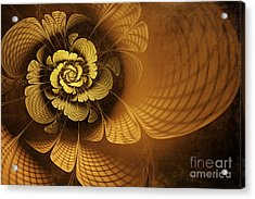 Gilded Flower Acrylic Print by John Edwards