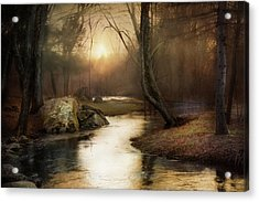 Acrylic Print featuring the photograph Gilded Woodland by Robin-Lee Vieira