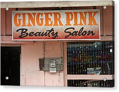 Ginger Pink Acrylic Print by Jez C Self
