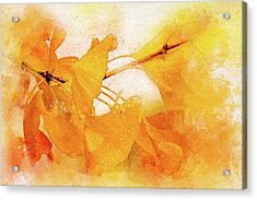 Ginkgo Abstraction Acrylic Print