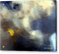 Ginkgo Leaf In Puddle Acrylic Print