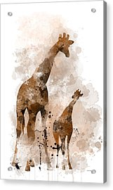 Giraffe And Baby Acrylic Print