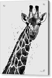 Giraffe In Black And White Acrylic Print by Hailey E Herrera