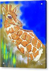 Giraffe Acrylic Print by J R Seymour