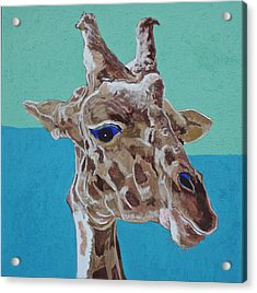 Giraffe Acrylic Print