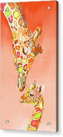 Giraffe Love- Orange Acrylic Print