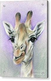Giraffe With Beautiful Eyes Acrylic Print