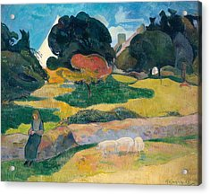 Girl Herding Pigs Acrylic Print by Paul Gauguin