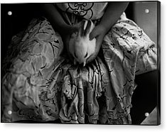 Girl With Bunny Acrylic Print by Werner Hammerstingl