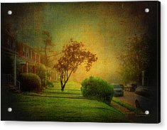 Gittings Avenue Acrylic Print