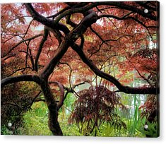Giverny Gardens Acrylic Print by Jim Hill