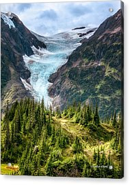 Acrylic Print featuring the photograph Glacier And Alpine Meadow by Claudia Abbott