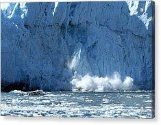 Glacier Calving Acrylic Print by Dave Clark