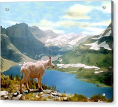 Glacier National Park Acrylic Print by Kurt Van Wagner