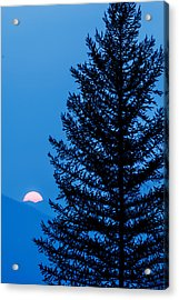 Acrylic Print featuring the photograph Glacier National Park Sunset Blue by Kevin Blackburn