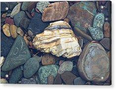 Glacier Park Creek Stones Submerged Acrylic Print