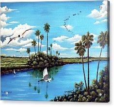 Glades Shark River Slough Acrylic Print