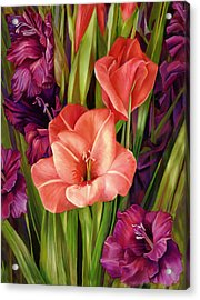 Gladiolus A Bee's View Acrylic Print by Nancy Tilles