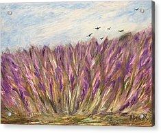 Gladiolus Field Acrylic Print