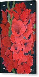 Glads Acrylic Print by Dwight Williams
