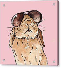 Glamorous Rabbit Acrylic Print by Katrina Davis