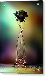 Glasblower's Rose Acrylic Print