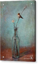 Glass Bottle And Hummingbird Acrylic Print by Lori  McNee