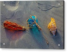 Glass Float And Seashell Acrylic Print by Garry Gay