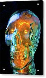 Glass Skull Acrylic Print by Garry Gay