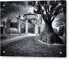 Glasshouse And Tree Acrylic Print by Wayne Sherriff