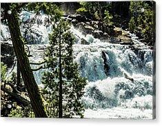 Glen Alpine Falls 1 Acrylic Print