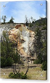 Glen Spring At Mammoth Hot Springs Upper Terraces Acrylic Print by Louise Heusinkveld