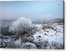 Acrylic Print featuring the photograph Rannoch Moor Winter Mist by Grant Glendinning