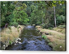 Acrylic Print featuring the photograph Glendasan River. by Terence Davis