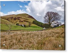 Acrylic Print featuring the photograph Glendevon In Central Scotland by Jeremy Lavender Photography