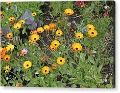 Glenveagh Castle Gardens 4279 Acrylic Print