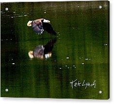 Glide Acrylic Print