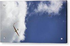 Glider Acrylic Print