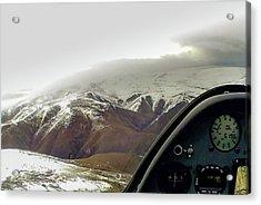 Gliding Acrylic Print by Patrick Flynn