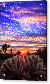 Glimmering Skies Acrylic Print
