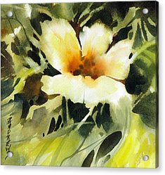 Glimpse Acrylic Print by Rae Andrews