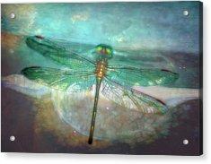 Glistening Acrylic Print