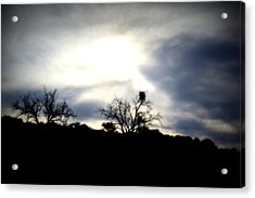 Gloaming Epiphany Acrylic Print by Nature Macabre Photography