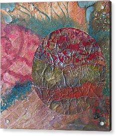 Global Series 1 Acrylic Print by John Vandebrooke
