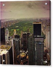 Gloomy Central Park Acrylic Print by Martin Newman