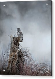 Gloomy Sunday  Acrylic Print by Heather King