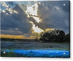 Da211 Glorious Bluebonnet Sunset By Daniel Adams Acrylic Print