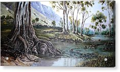 Glorious Gums - Flinders Ranges Acrylic Print
