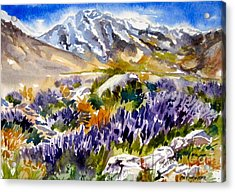 Acrylic Print featuring the painting Glorious Lupine by Pat Crowther